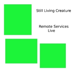 slc-remoteserviceslive