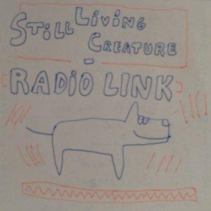 slc-radiolink.jpg